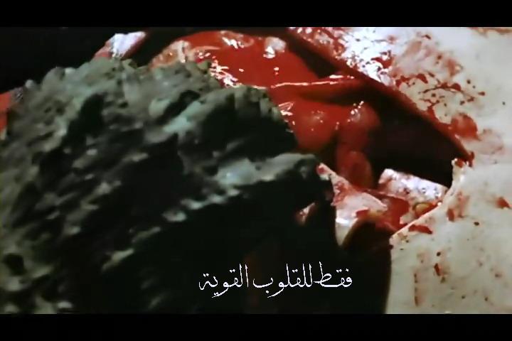 فلم الرعب الحرباء Las Garras de Loreley 1974 من ترجمتي ورفعي Garras21